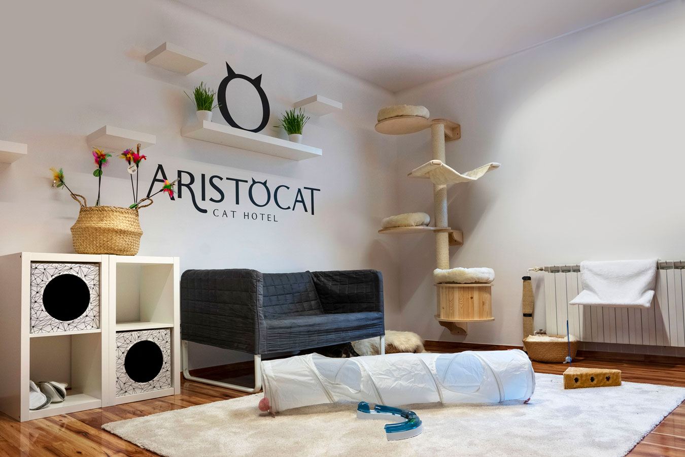 Aristocat single room